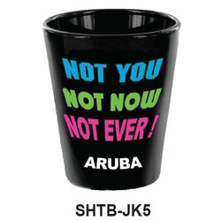 NOT YOU, NOT NOW, NOT EVER SHOT GLASS