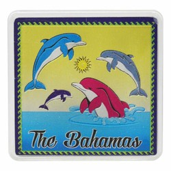 The Bahamas DOLPHINS Acrylic Foil Magnets
