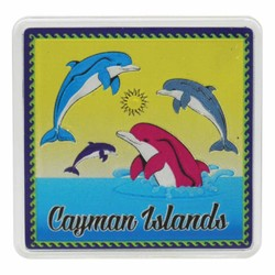 Cayman Islands DOLPHINS Acrylic Foil Magnets