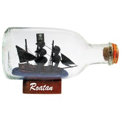 "Ships In A Bottle | Size: 3.25""  x  5.5"""