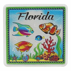 Florida FISH Acrylic Foil Magnets