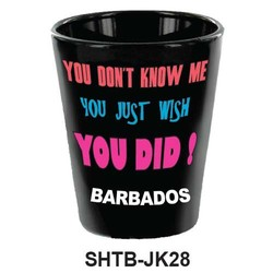 YOU DON'T ME, YOU JUST WISH YOU DID SHOT GLASS