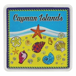 Cayman Islands SEA SHELLS Acrylic Foil Magnets