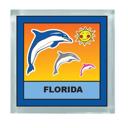 DOLPHINS SQUARE MAGNET