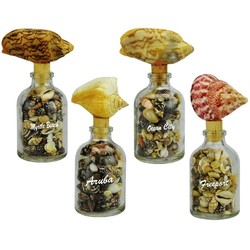 CONCH & SHELL JARS