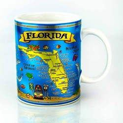 METALLIC FLORIDA MAP MUG
