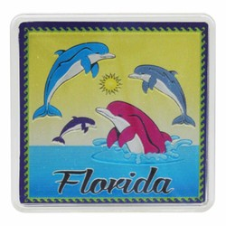Florida DOLPHINS Acrylic Foil Magnets