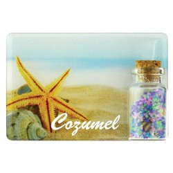 Starfish Color Sand and Shell Bottle Magnet