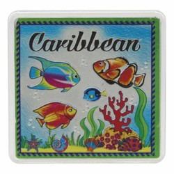 The Caribbean FISH Acrylic Foil Magnets