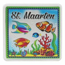 St. Maarten FISH Acrylic Foil Magnets