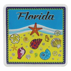 Florida SEA SHELLS Acrylic Foil Magnets