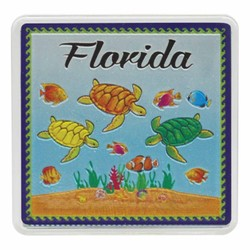 Florida TURTLES Acrylic Foil Magnets