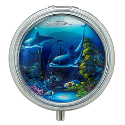 Dolphins Glass Top Pill Box