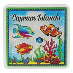 Cayman Islands FISH Acrylic Foil Magnets