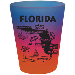 Florida Map TYE DYE Shot Glass