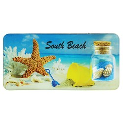 Starfish Sand and Shell Bottle Magnet